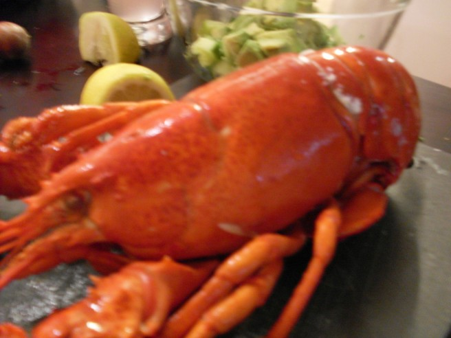 The lobster is NOT moving really fast. The photo is blurry.