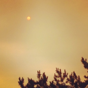 Creepy yellow sky; smoke cover.
